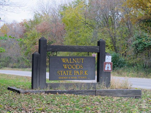 knitxmidwest Walnut Woods